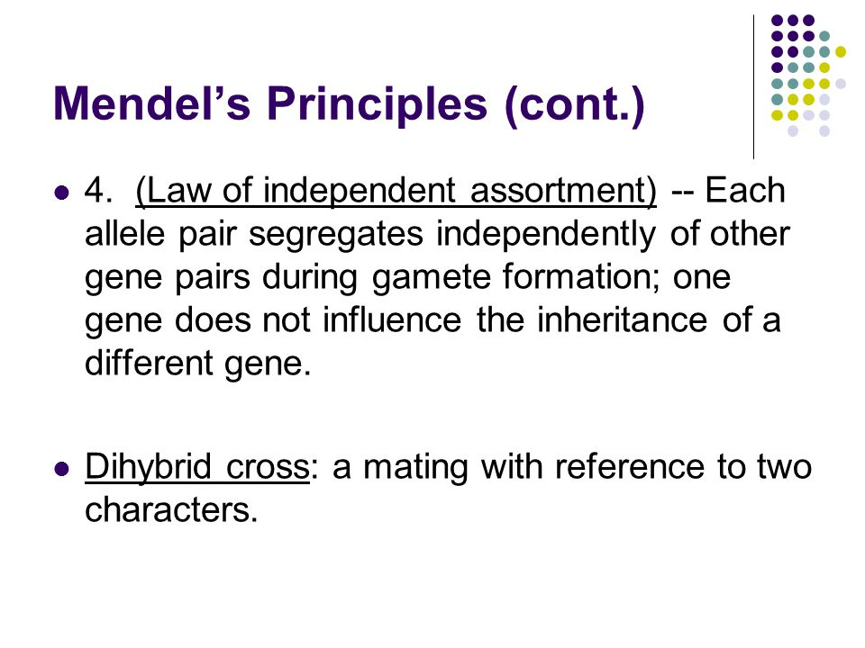 Mendel's Principles (cont.)