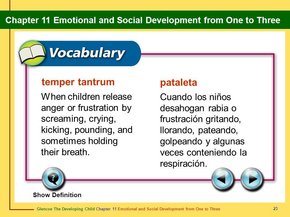 temper tantrum pataleta