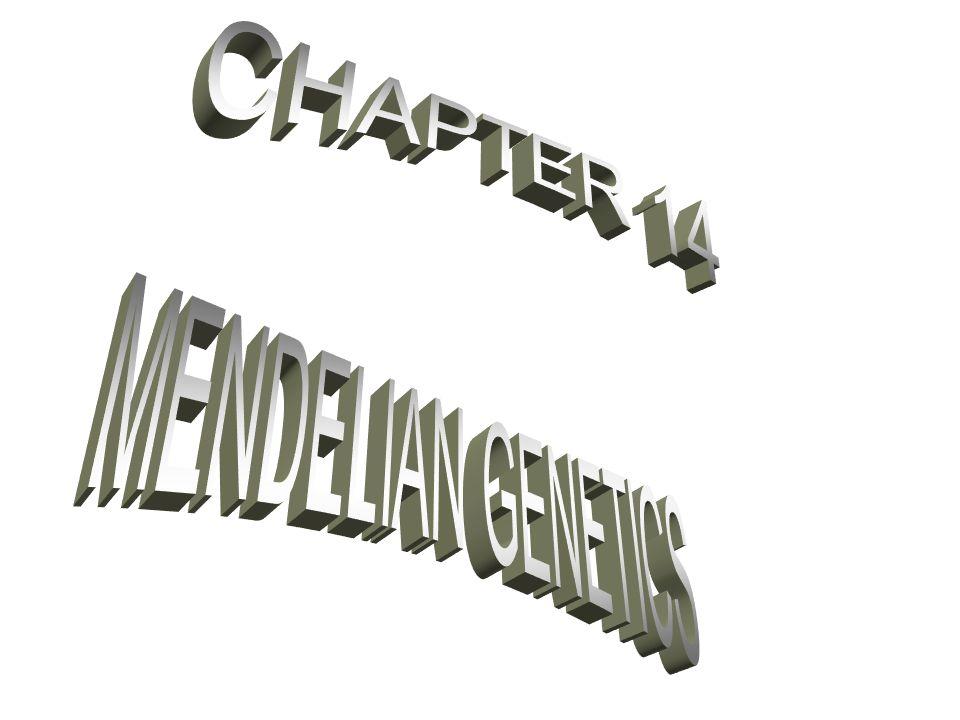 CHAPTER 14 MENDELIAN GENETICS