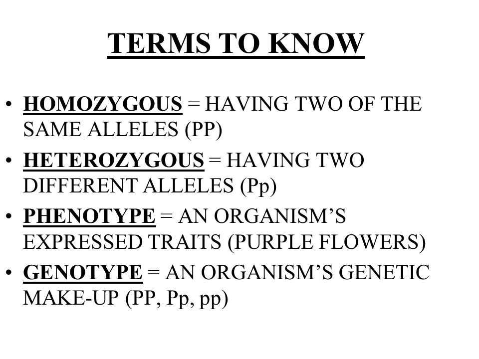 TERMS TO KNOW HOMOZYGOUS = HAVING TWO OF THE SAME ALLELES (PP)