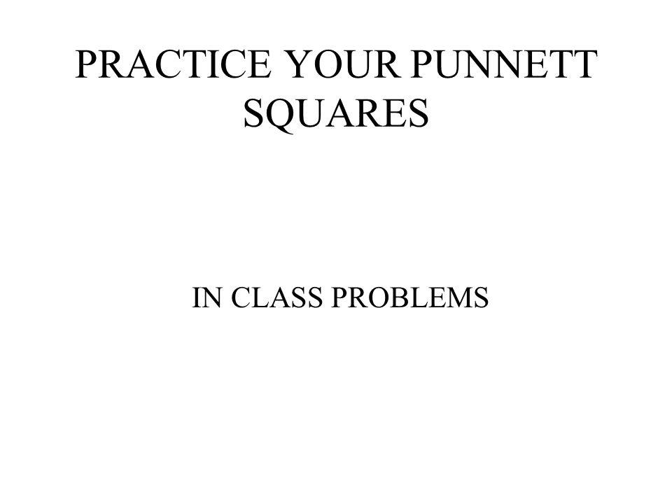 PRACTICE YOUR PUNNETT SQUARES