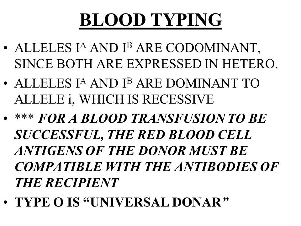 BLOOD TYPING ALLELES IA AND IB ARE CODOMINANT, SINCE BOTH ARE EXPRESSED IN HETERO. ALLELES IA AND IB ARE DOMINANT TO ALLELE i, WHICH IS RECESSIVE.