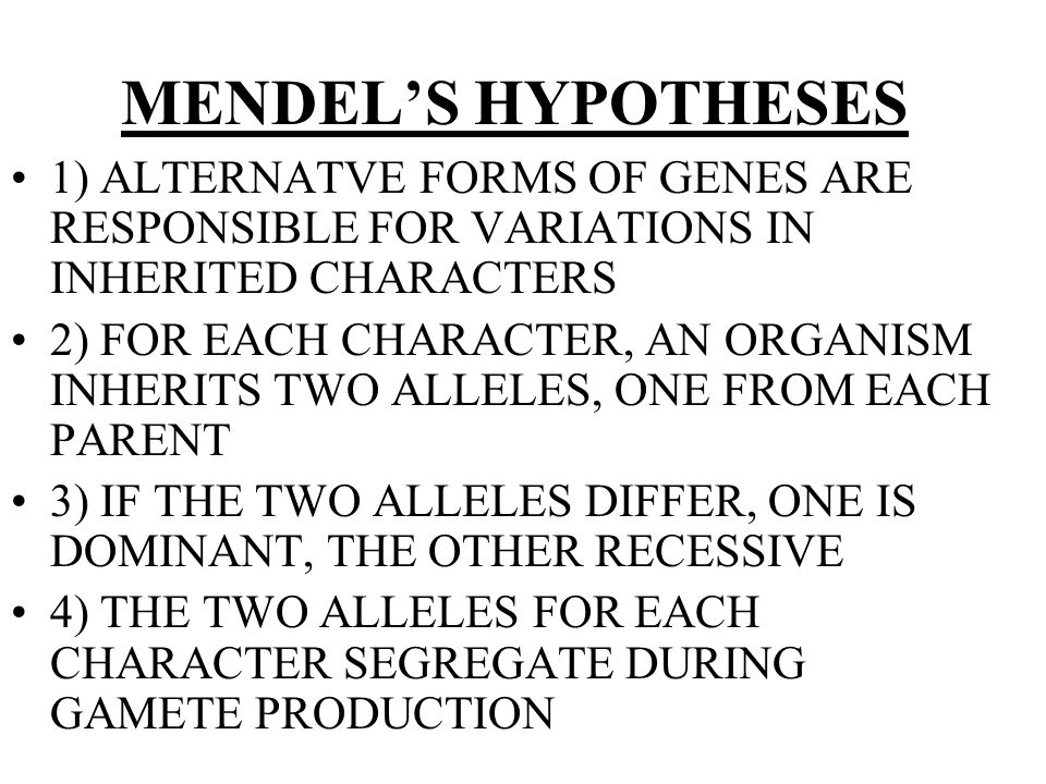 MENDEL'S HYPOTHESES 1) ALTERNATVE FORMS OF GENES ARE RESPONSIBLE FOR VARIATIONS IN INHERITED CHARACTERS.