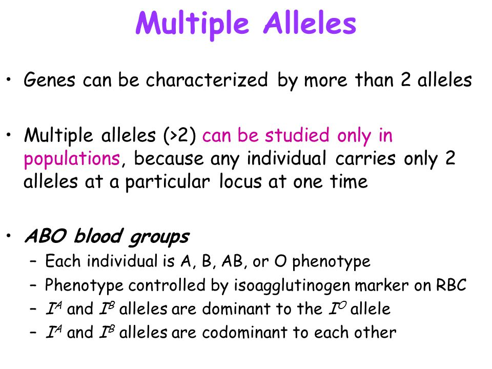 Multiple Alleles Genes can be characterized by more than 2 alleles