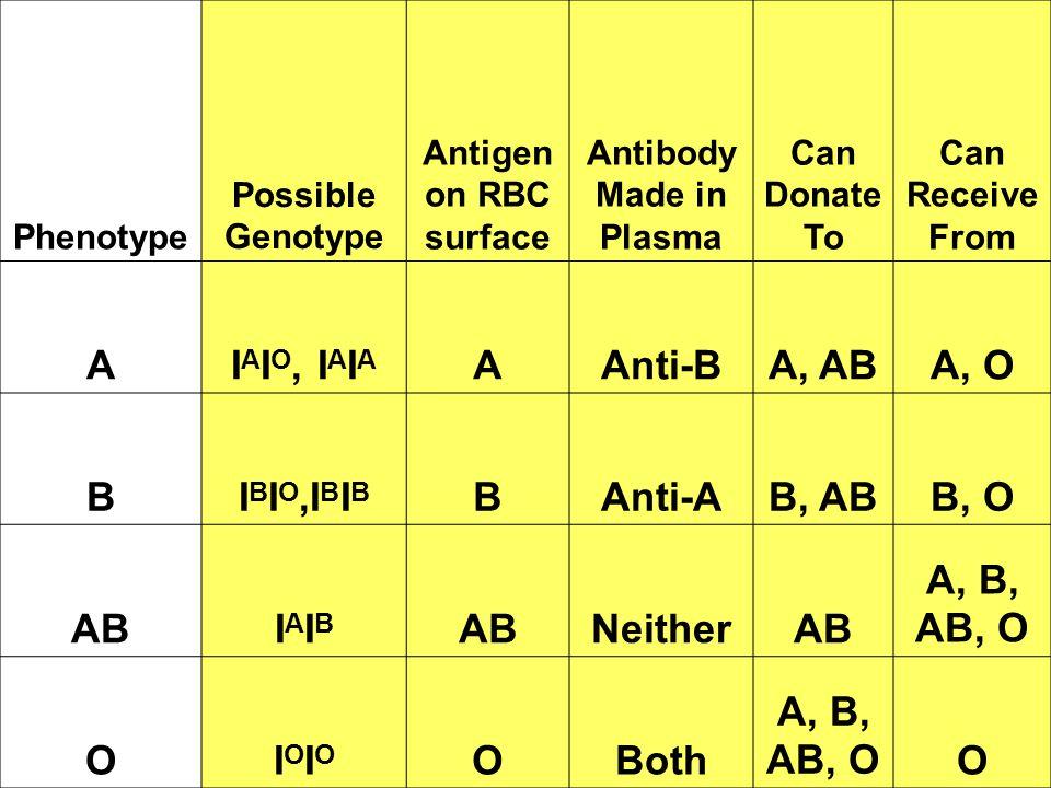 Antibody Made in Plasma