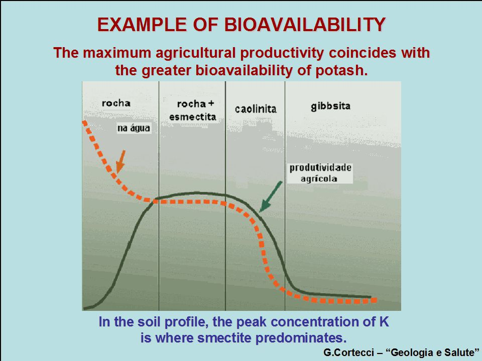 EXAMPLE OF BIOAVAILABILITY