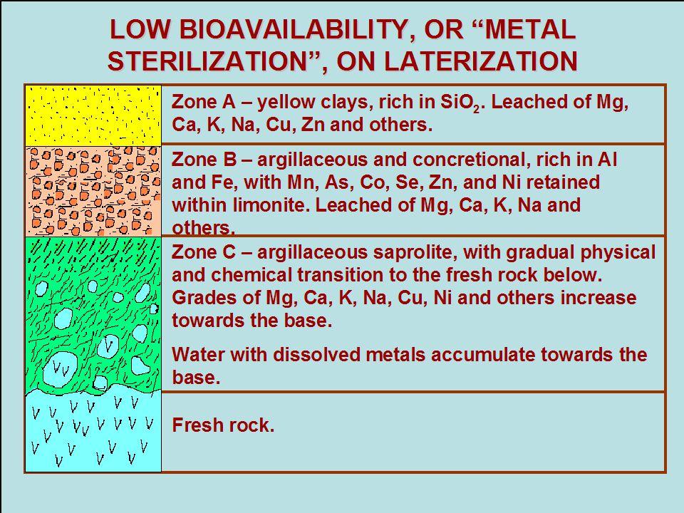 LOW BIOAVAILABILITY, OR METAL STERILIZATION , ON LATERIZATION
