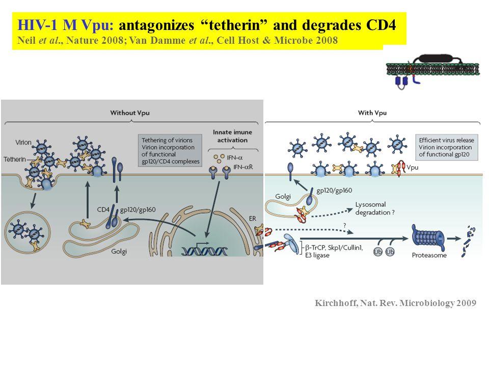 Courtesy Paul Spearman Kirchhoff, Nat. Rev. Microbiology 2009