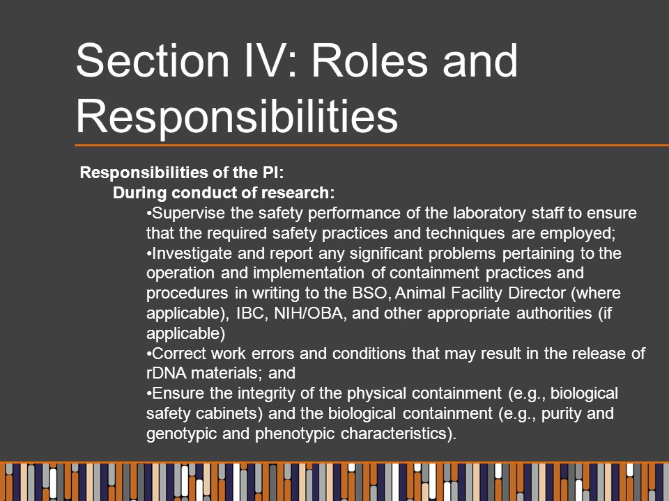 Section IV: Roles and Responsibilities