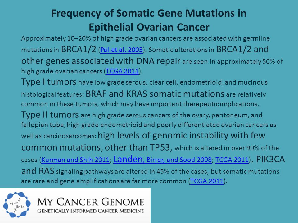 Frequency of Somatic Gene Mutations in Epithelial Ovarian Cancer