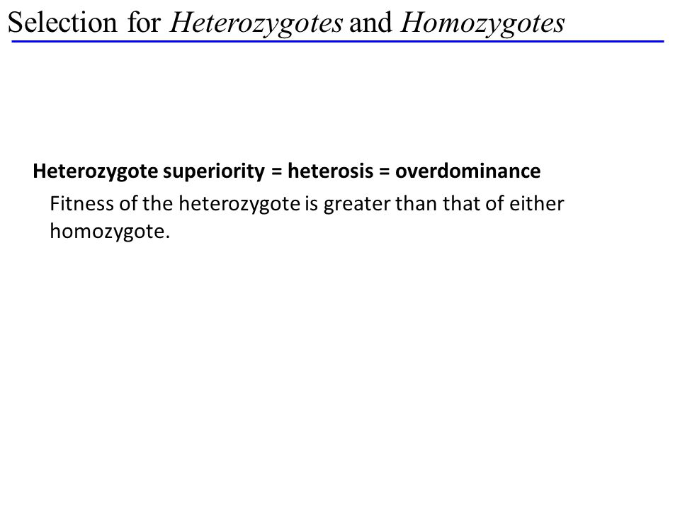 Selection for Heterozygotes and Homozygotes