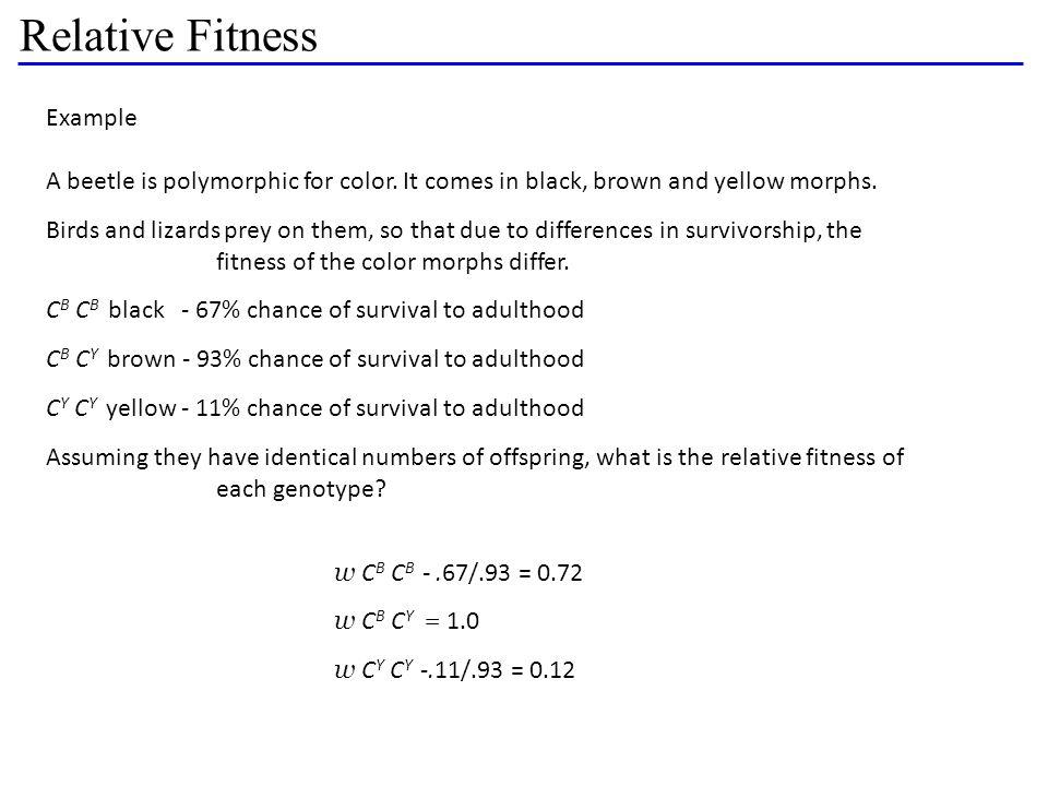 Relative Fitness Example