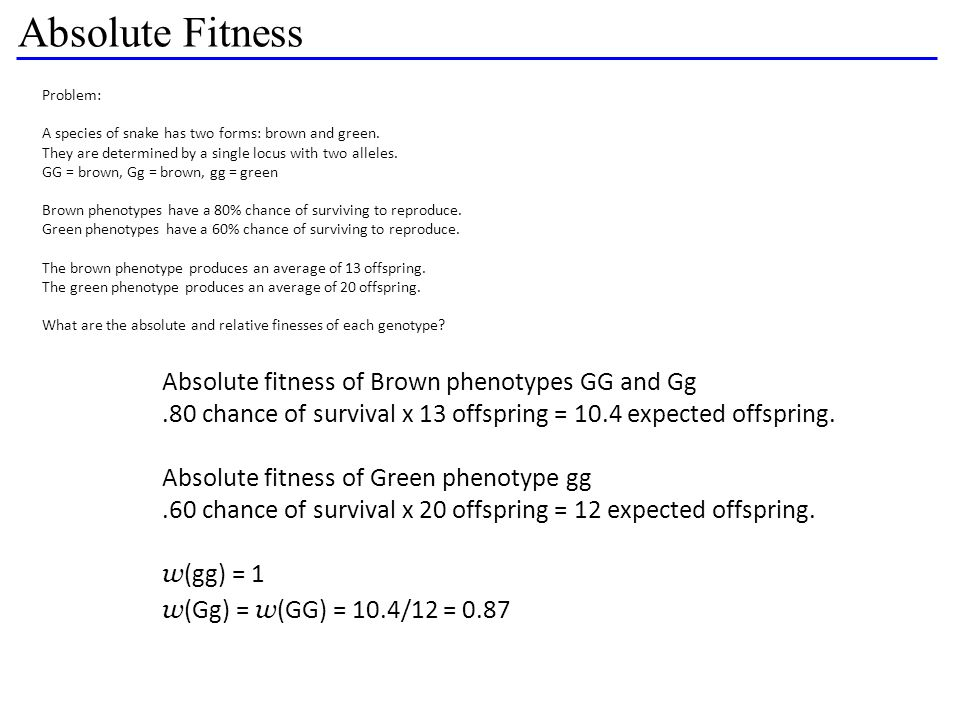 Absolute Fitness Absolute fitness of Brown phenotypes GG and Gg