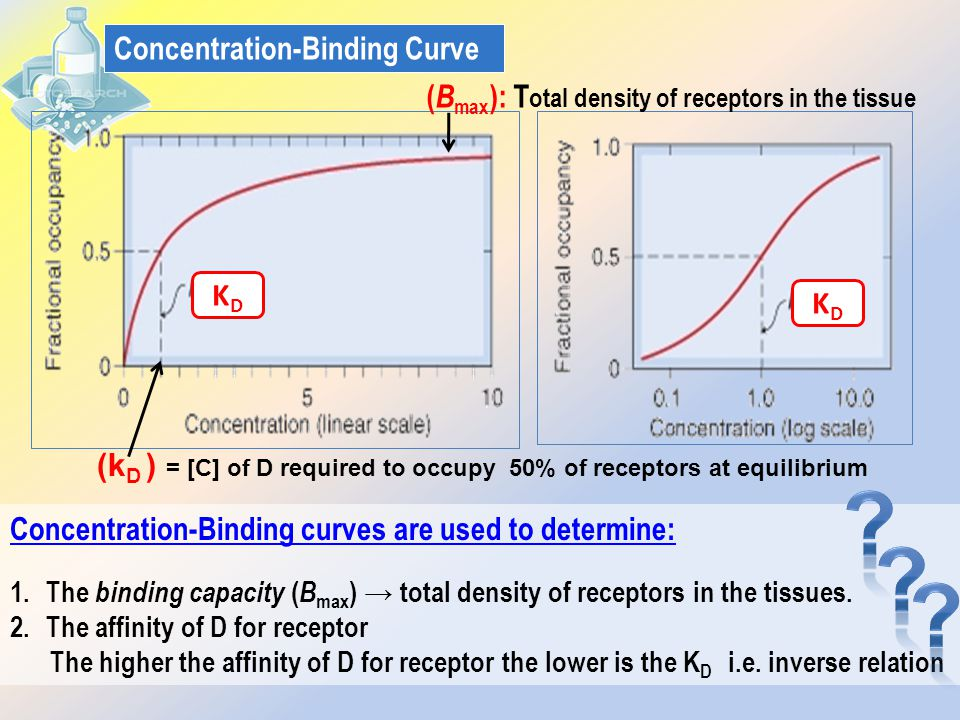 Concentration-Binding Curve
