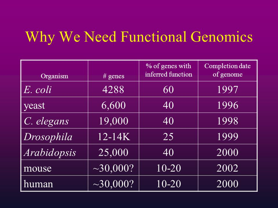 Why We Need Functional Genomics