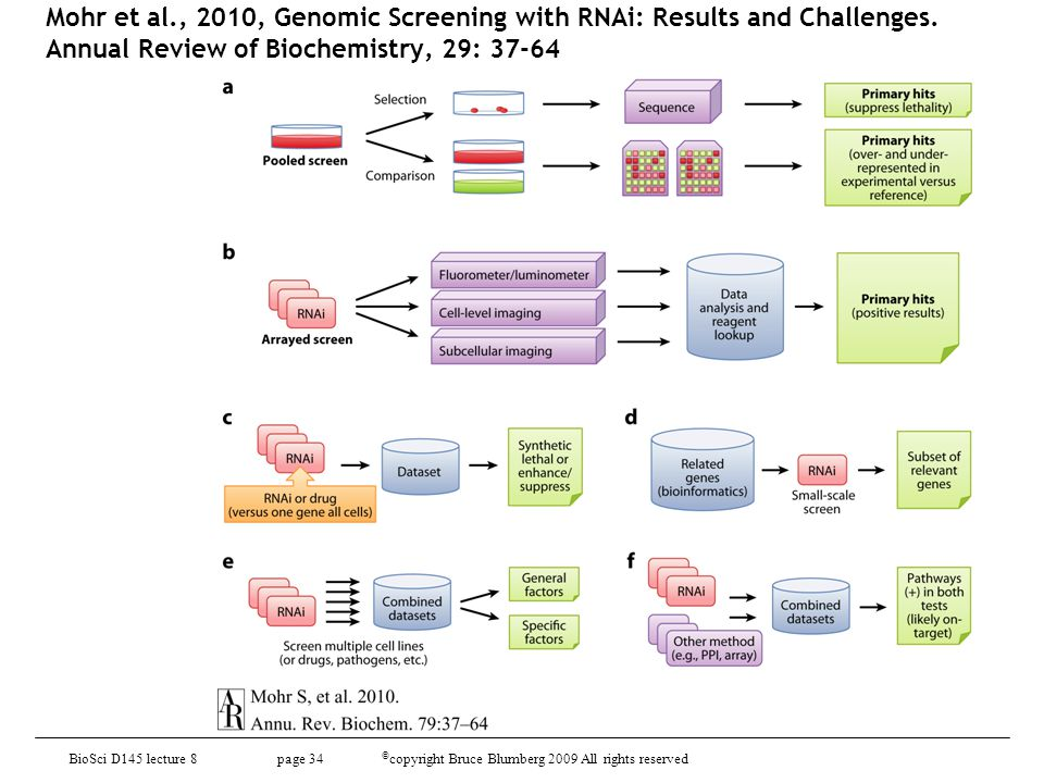 Mohr et al., 2010, Genomic Screening with RNAi: Results and Challenges. Annual Review of Biochemistry, 29: 37-64