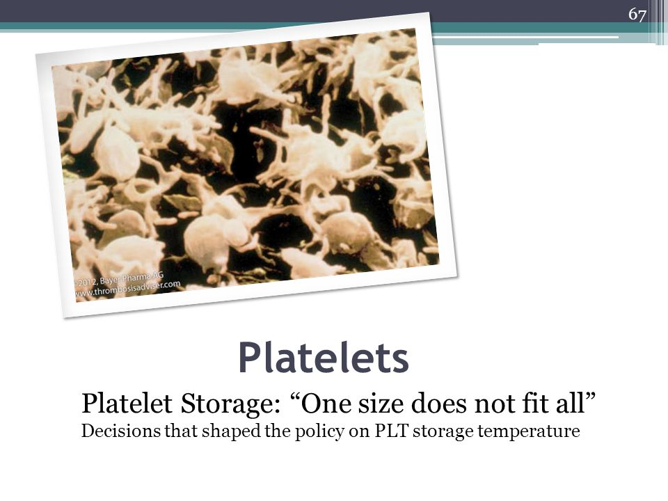 Platelets Platelet Storage: One size does not fit all Decisions that shaped the policy on PLT storage temperature.