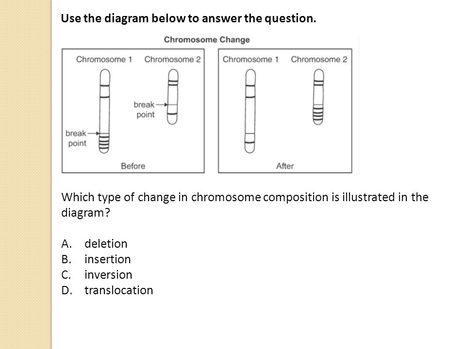 Use the diagram below to answer the question.
