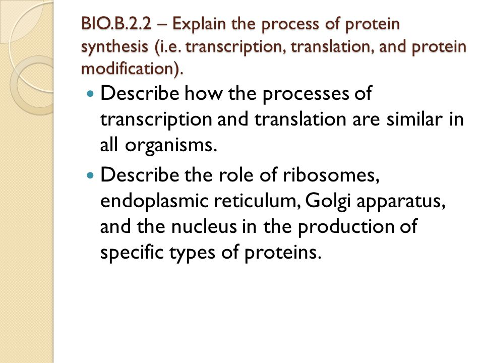 BIO. B. 2. 2 – Explain the process of protein synthesis (i. e