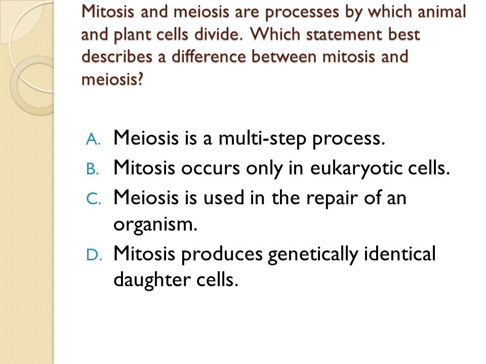 Meiosis is a multi-step process.
