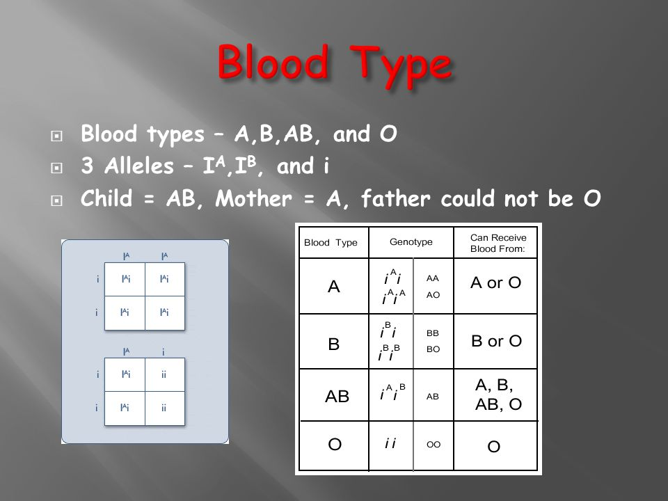 Blood Type Blood types – A,B,AB, and O 3 Alleles – IA,IB, and i