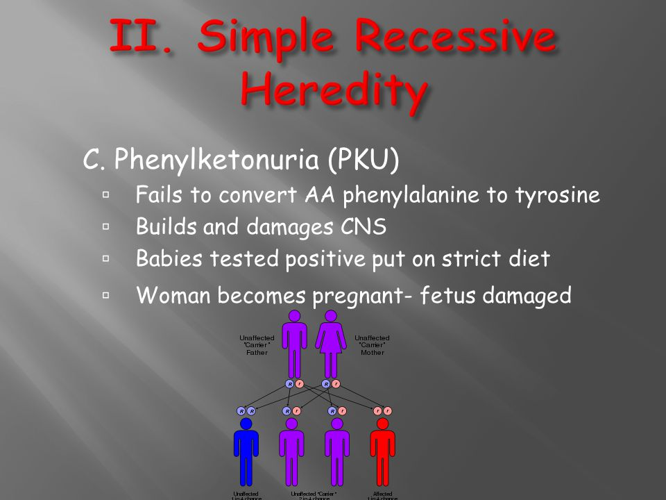II. Simple Recessive Heredity