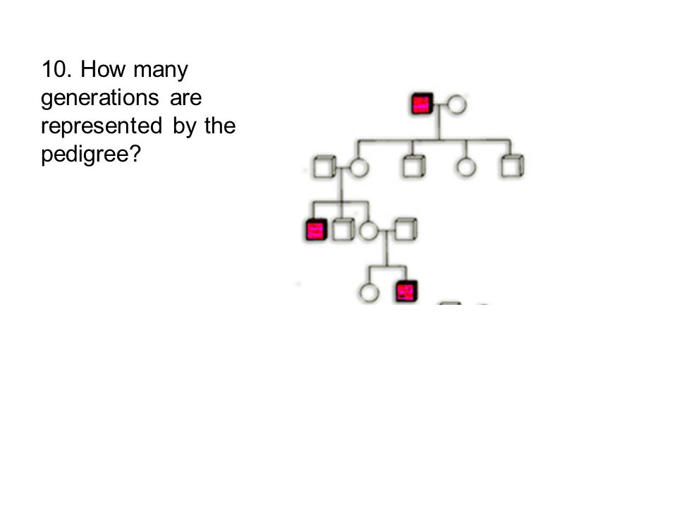 10. How many generations are represented by the pedigree
