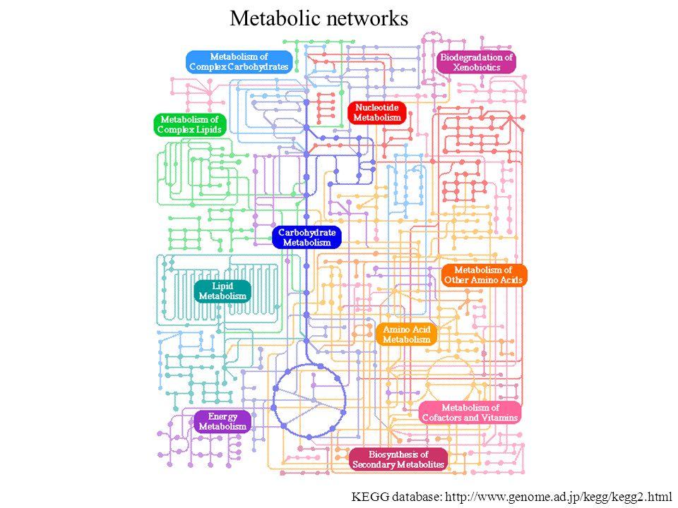 Metabolic networks KEGG database: http://www.genome.ad.jp/kegg/kegg2.html
