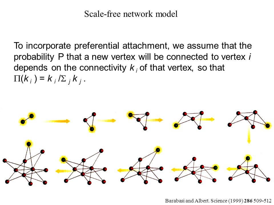 Scale-free network model