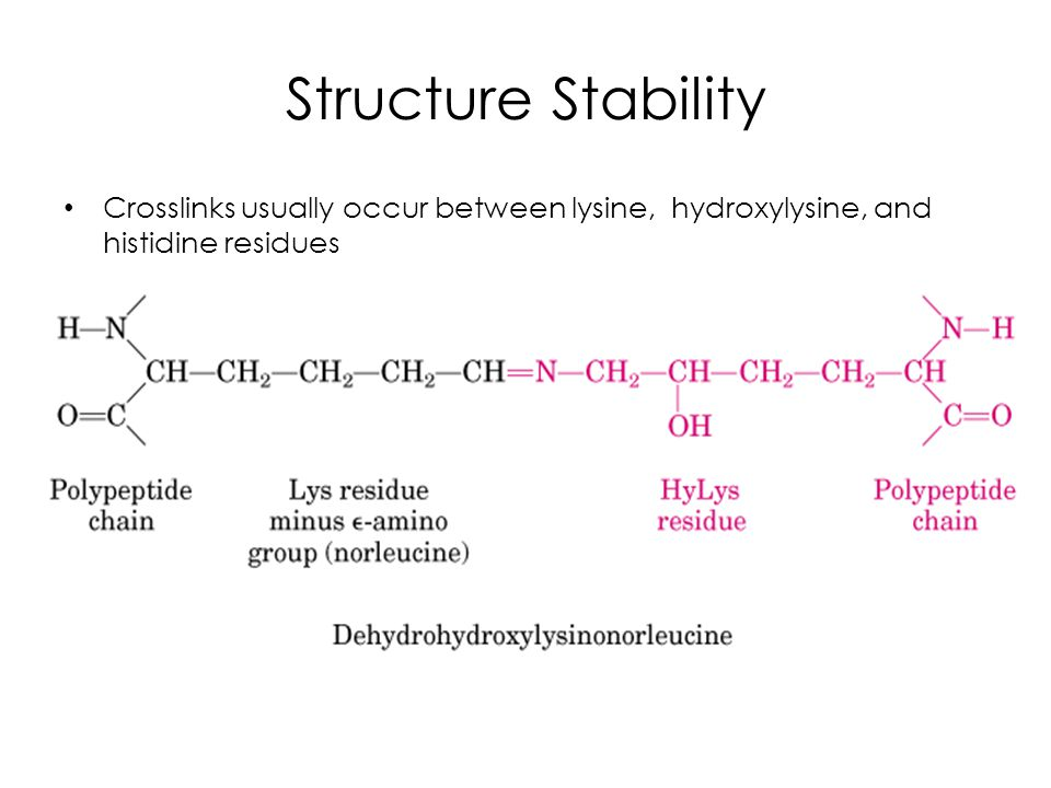 Structure Stability Crosslinks usually occur between lysine, hydroxylysine, and histidine residues