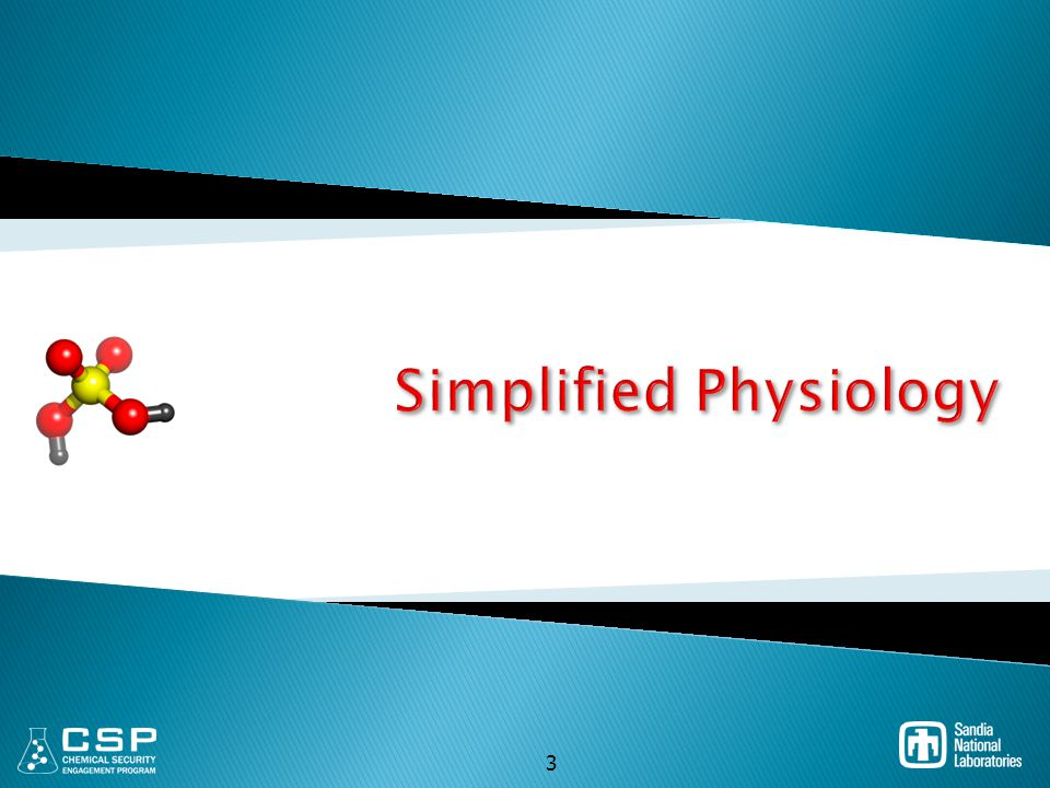 Simplified Physiology