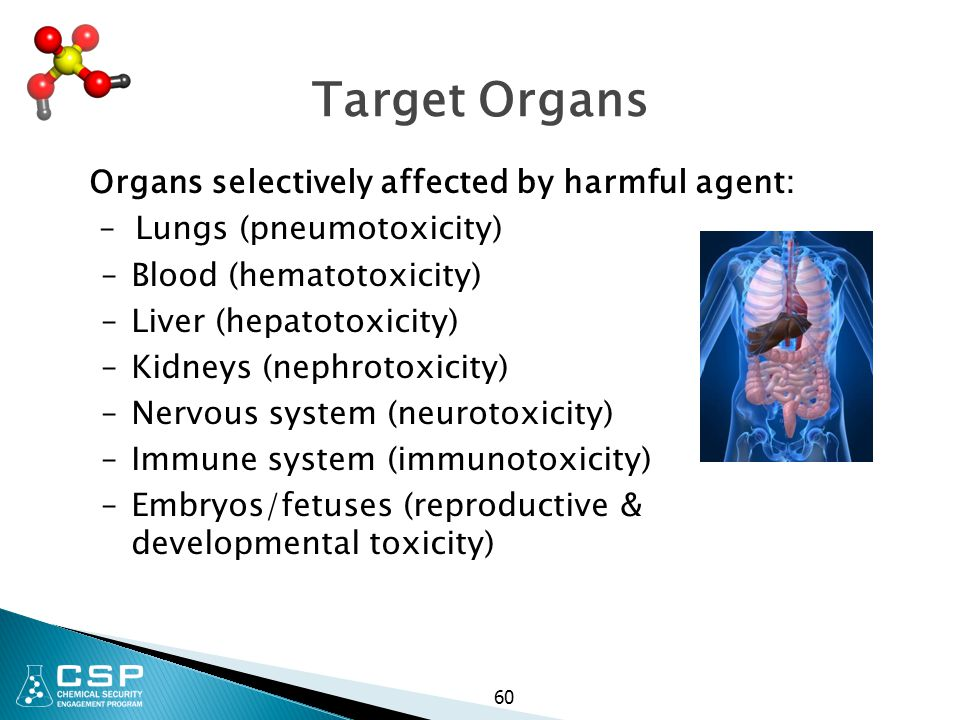 Target Organs Organs selectively affected by harmful agent:
