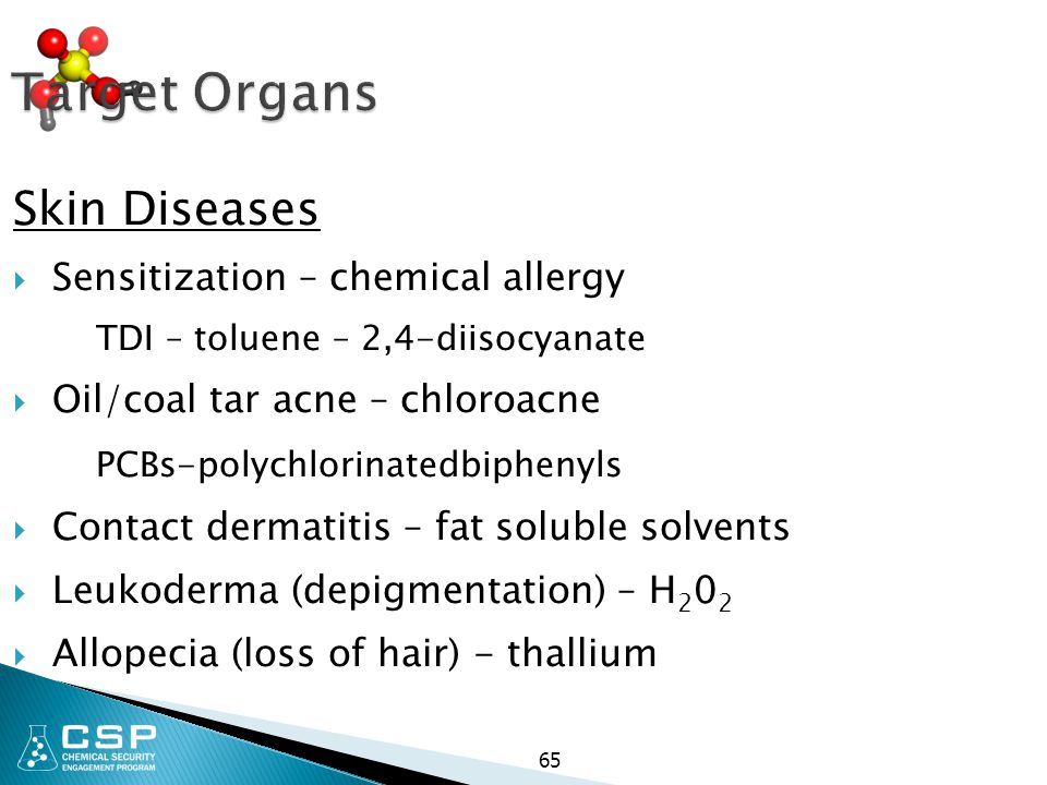 Target Organs Skin Diseases Sensitization – chemical allergy