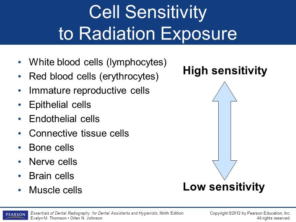 Cell Sensitivity to Radiation Exposure