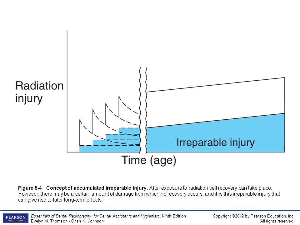 Figure 5-4 Concept of accumulated irreparable injury