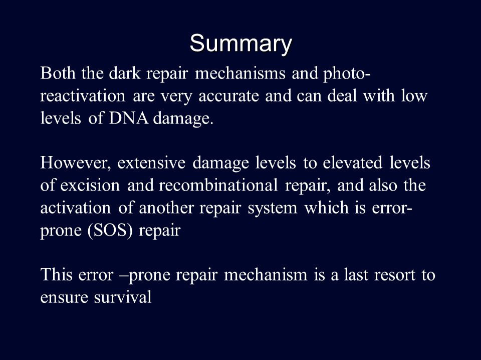Summary Both the dark repair mechanisms and photo-reactivation are very accurate and can deal with low levels of DNA damage.