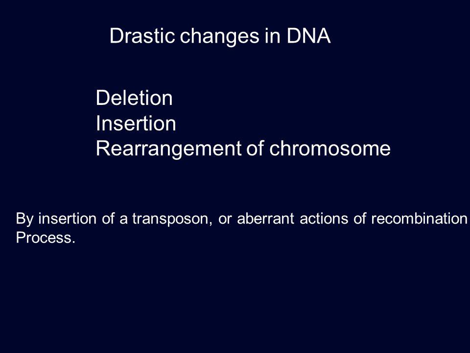 Rearrangement of chromosome