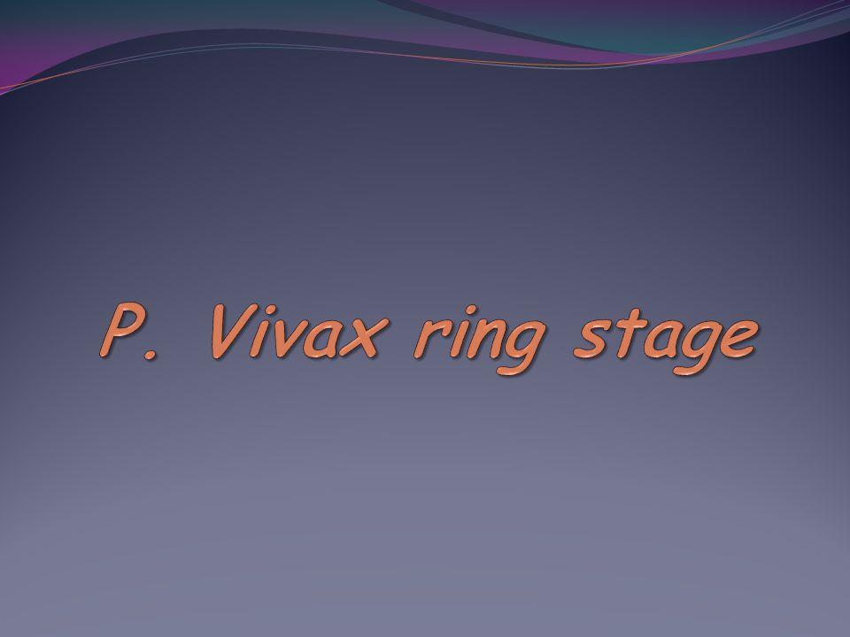 P. Vivax ring stage