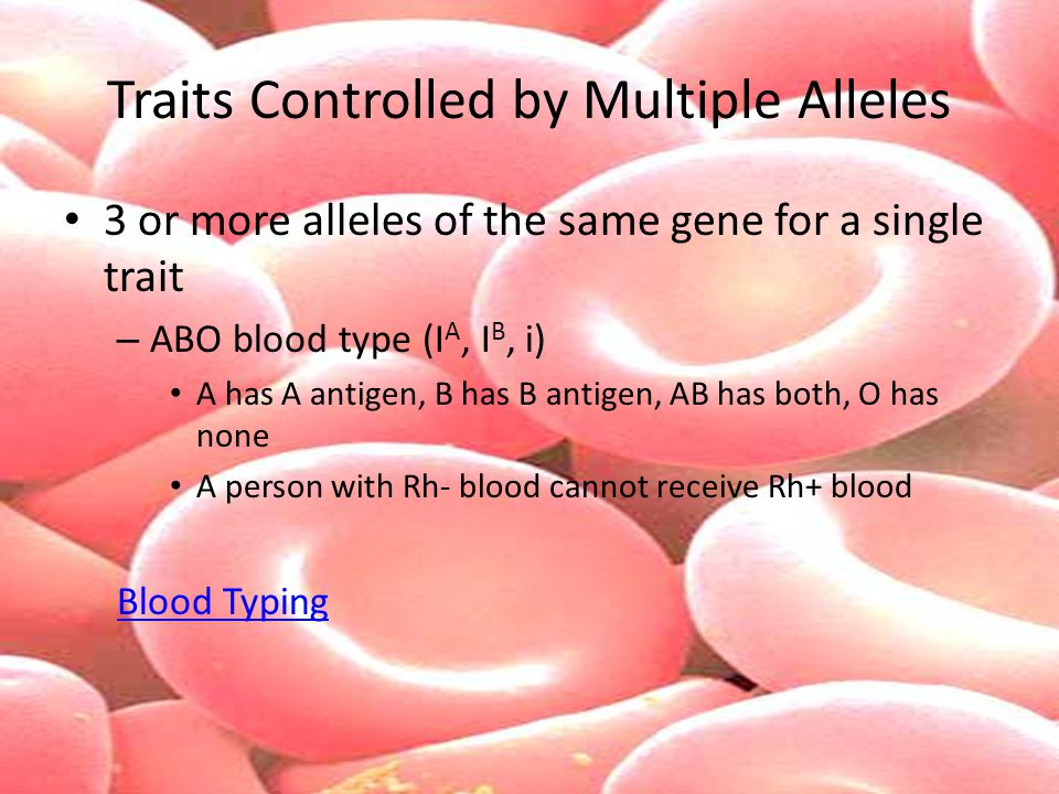 Traits Controlled by Multiple Alleles