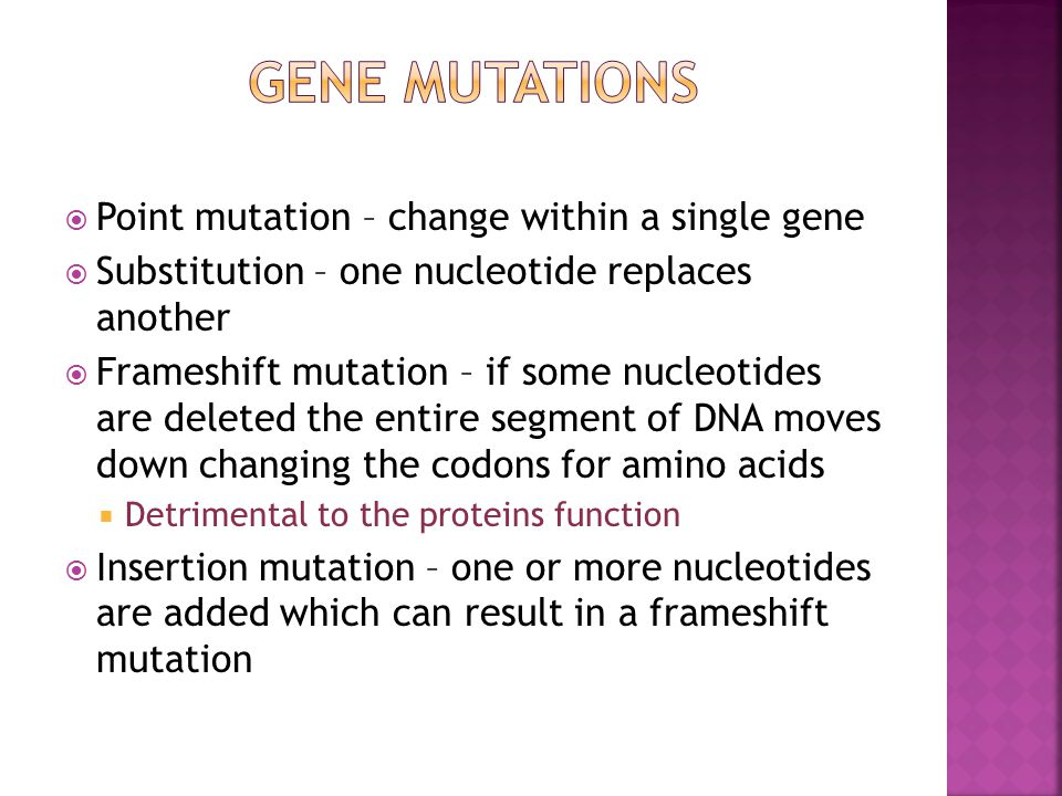 Gene Mutations Point mutation – change within a single gene