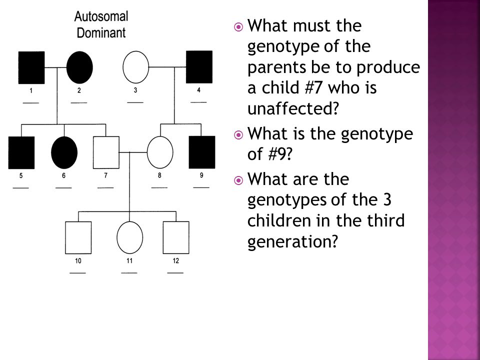 What is the genotype of #9