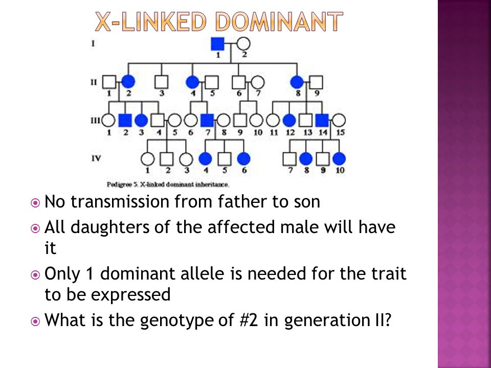 X-linked Dominant No transmission from father to son
