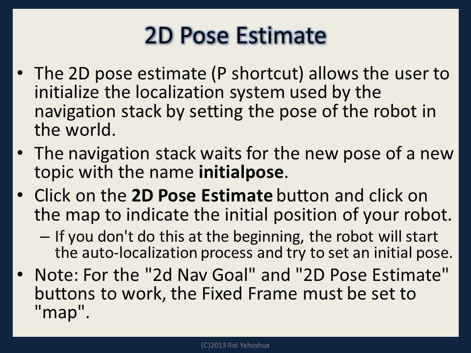 2D Pose Estimate