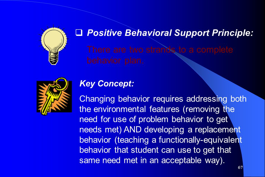 Positive Behavioral Support Principle: