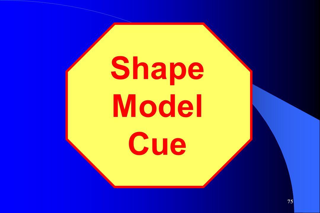 Shape Model Cue