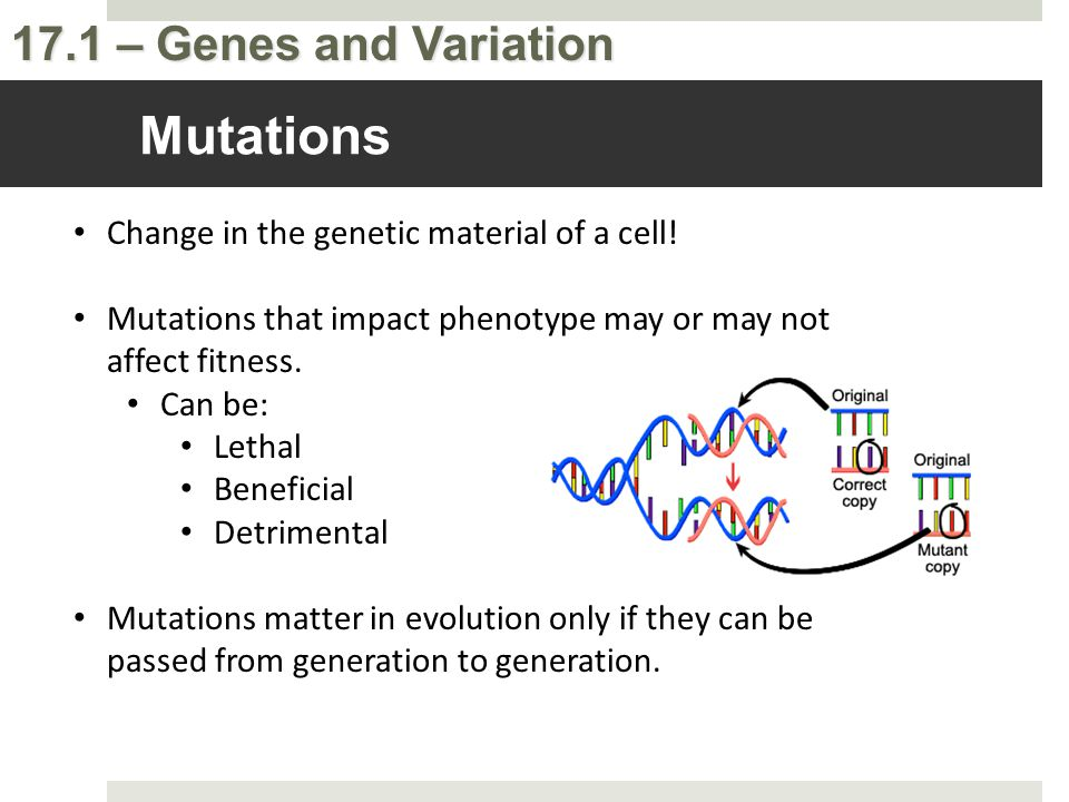 Mutations Change in the genetic material of a cell!