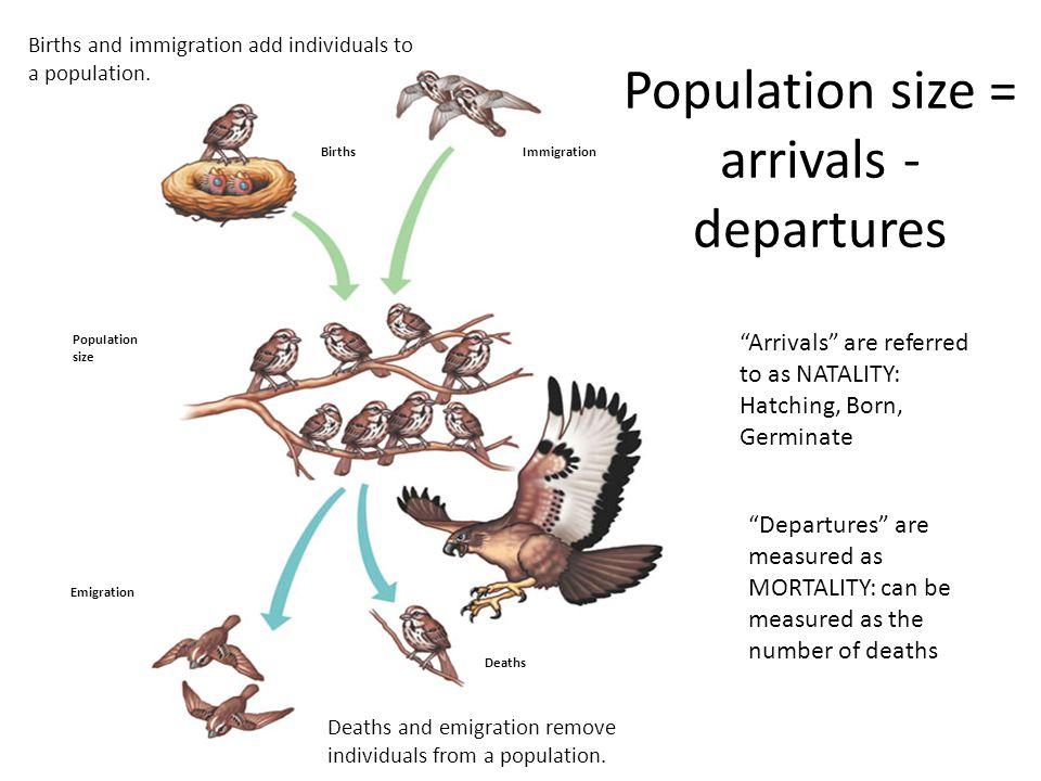 Population size = arrivals -departures