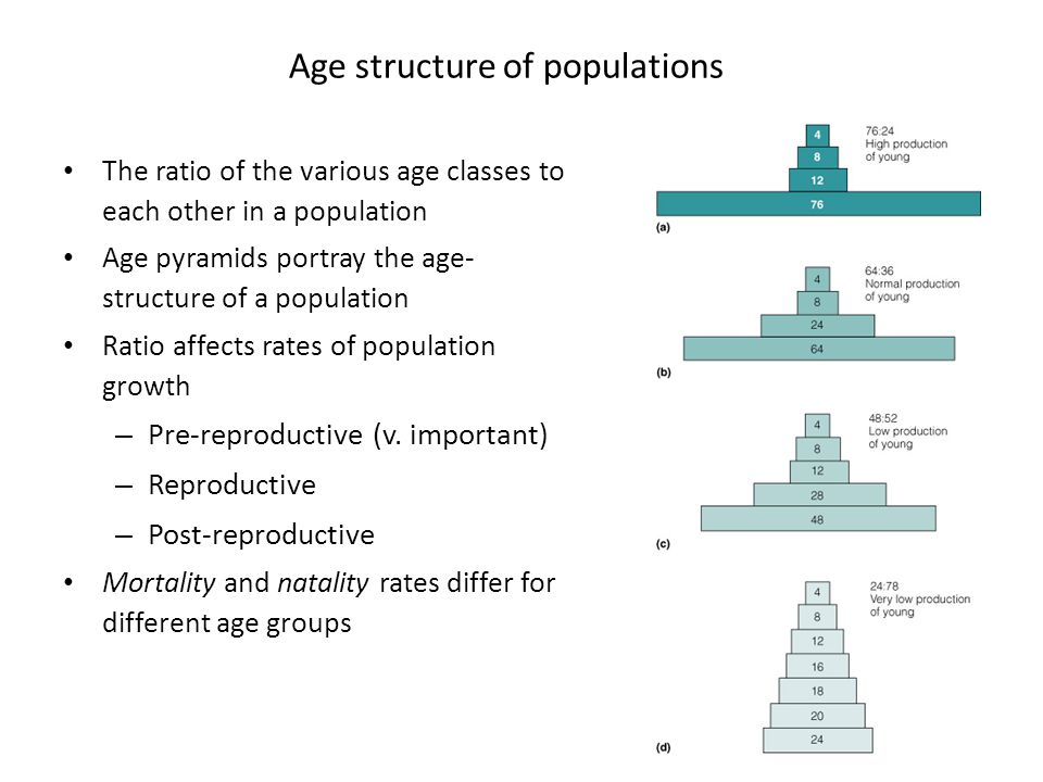 Age structure of populations