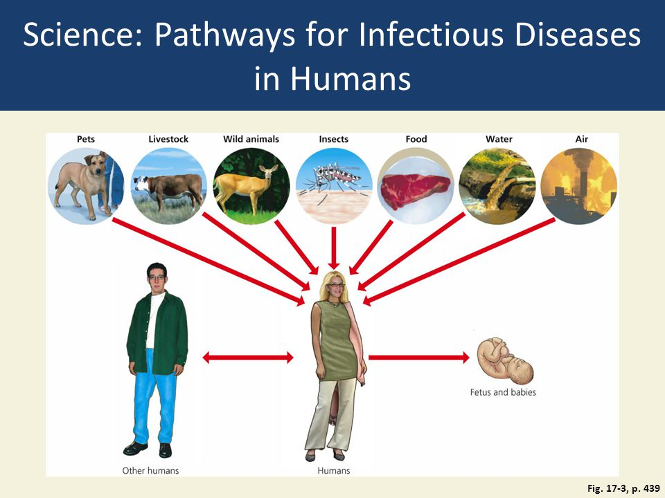 Science: Pathways for Infectious Diseases in Humans
