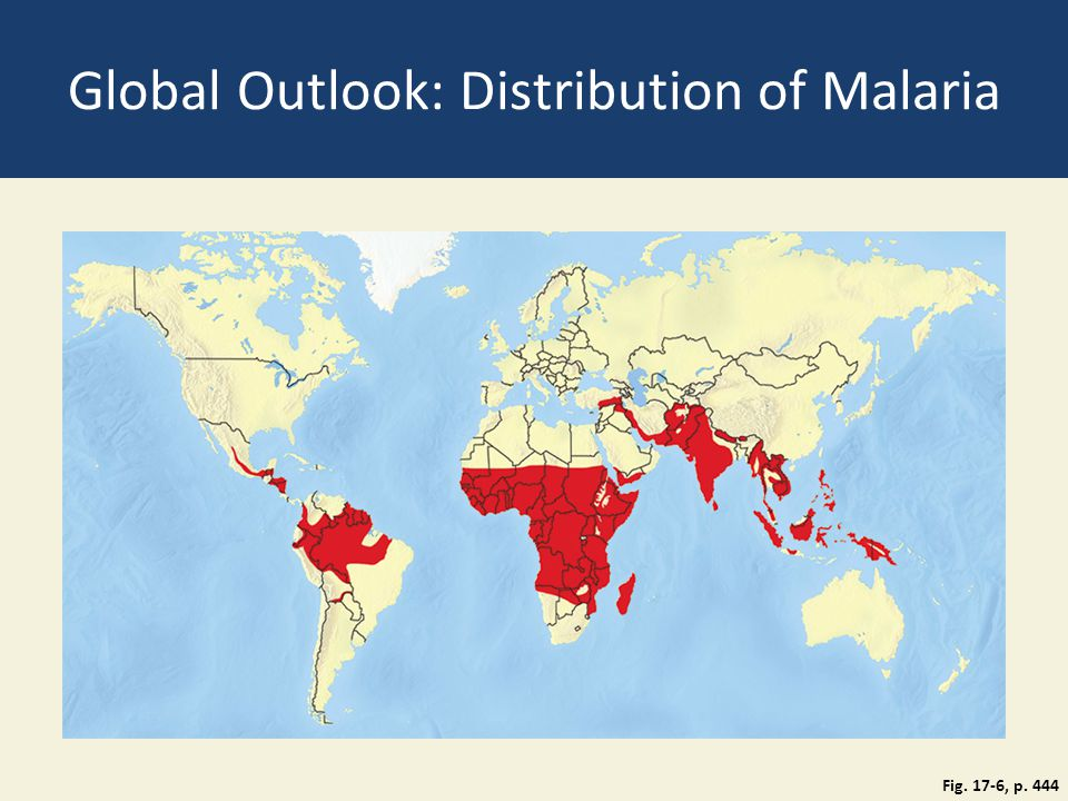 Global Outlook: Distribution of Malaria